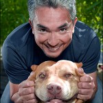 Cesar Millan, the Dog Whisperer.